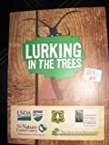 img - for LURKING IN THE TREES (RE: INSECT-INVADERS FROM ASIA KILLING TREES IN NEW ENGLAND) book / textbook / text book