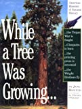 Search : While a Tree Was Growing