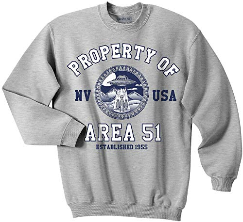 Area 51 Sweatshirt, Property of Area 51 Sweatshirt, UFO, Nevada Shirt, Alien Heather Gray