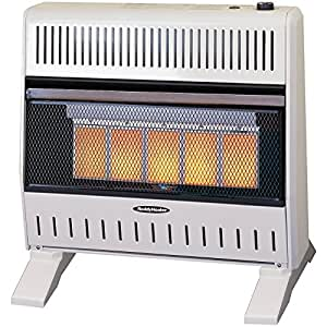 Amazon.com: Sure Heat 26,000 BTU Infrared Dual Fuel Gas