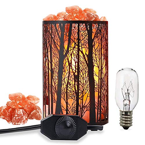 Salt Lamps, Natural Himalayan Salt Lamp, Forest Salt Lamp, Salt Night Lights, Salt Crystal Light with Retro Metal Basket Lamp and Extra 25W Lamp Bulbs (Salt Like Crystals Coming Out Of Skin)