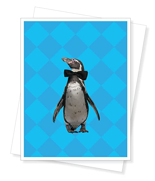 Amazon Party Penguin Birthday Greeting Card Arts Crafts Sewing
