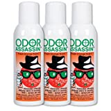 Odor Assassin Orange, Set of 3