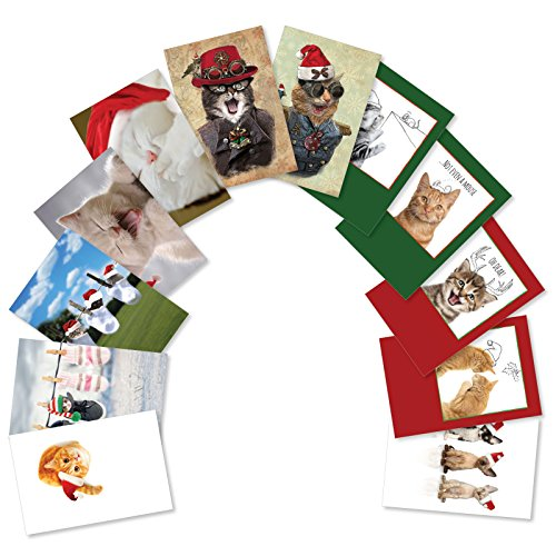 (12 Boxed 'Merry Catsmas' Assorted Christmas Cards w/ Envelopes - Featuring Images of Cute Kitty Cats Wearing Santa Hats - Happy Holidays and Seasons Greetings Gift - A Fun Variety Box A5647XSG-B1x12)