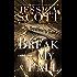 Break My Fall (Falling Book 2)