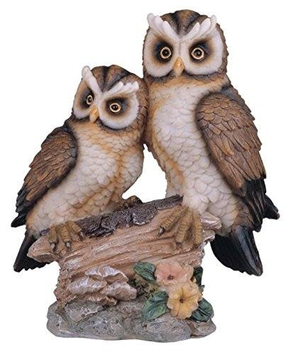 (StealStreet Polyresin Tan and Brown Owls Perched On Tree Log Figurine, 6.5