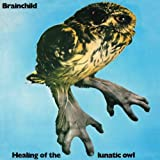 Healing of the Lunatic Owl by BRAINCHILD (2013-01-08)