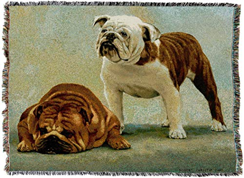 Pure Country Weavers - Bulldog I Said I Was Sorry Woven Tapestry Throw Blanket with Fringe  USA Size 72 x 54