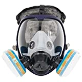 Complete Suit Trudsafe 6800 Painting Spraying Full Face Mask Respirator, Dust Mask, 2 Kinds of Connectors, Good Tightness, Filters Included