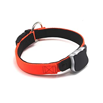 Amazon.com: QNMM Collar de perro mascota GPS, dispositivo ...