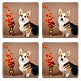 MSD Square Coasters Welsh Corgi Pembroke dog Image 33648527 by MSD Customized Tablemats Stain Resistance Collector Kit Kitchen Table Top DeskDrink Customized Stain Resistance Collector Kit Kitchen Tab