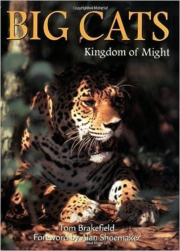 Big Cats: Kingdom of Might (Wildlife) by Tom Brakefield (1993-01-01)