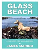 Search : Glass Beach: A Field Survey / Fort Bragg, California