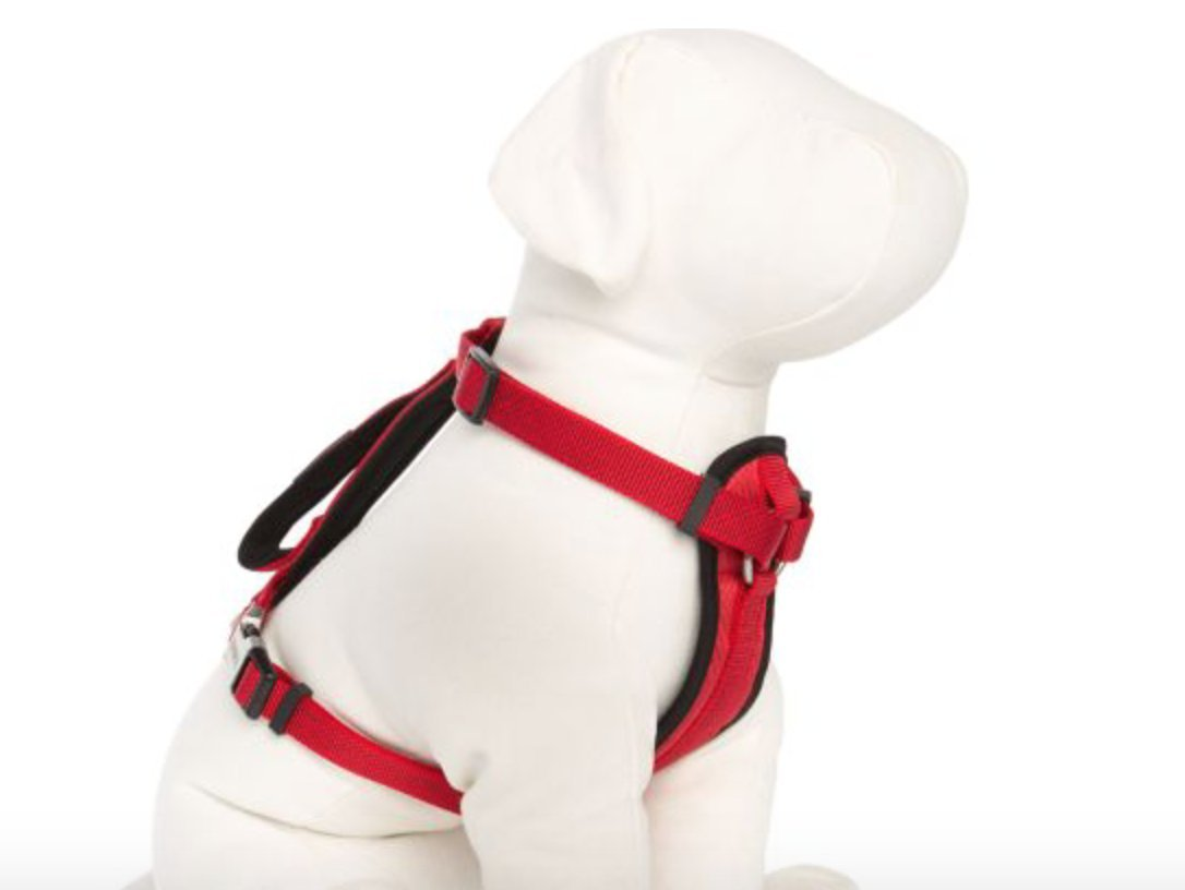 KONG Comfort Padded Chest Plate Dog Harness offered by Barker Brands Inc(XL, Red).