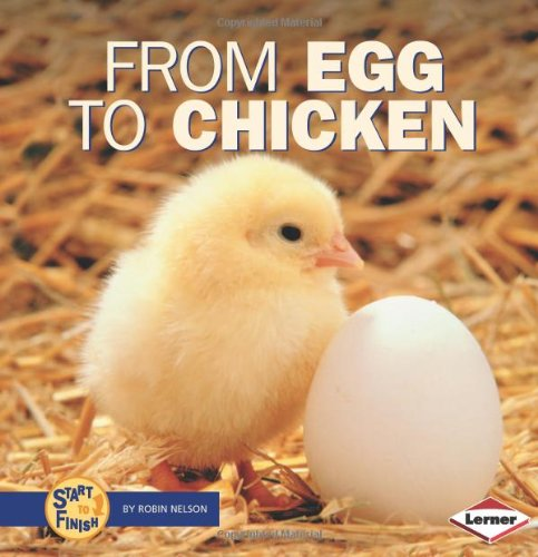 From Egg to Chicken (Start to Finish) pdf