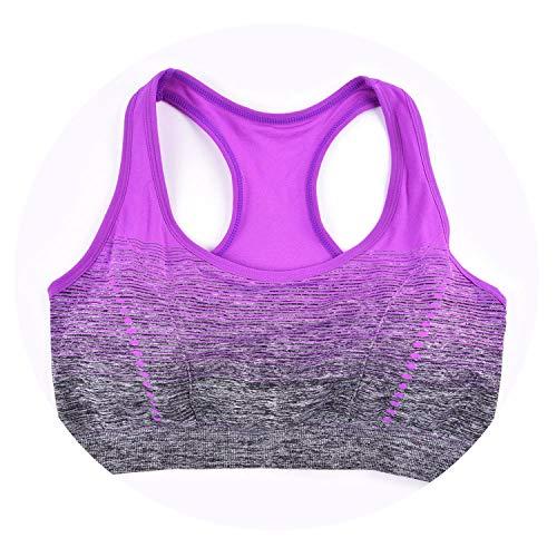 (Sports Bra High Stretch Breathable Top Fitness Women Padded Yoga Seamless Crop Gradient Bra,Violet,M,30)