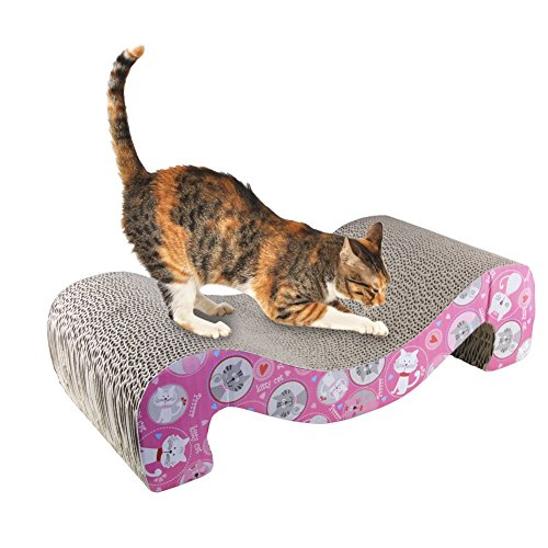 cats urinating on rugs how to stop