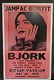BJORK Poster Concert 1995 Foo Fighters AFGHAN WHIGS Sweet 75 Wool