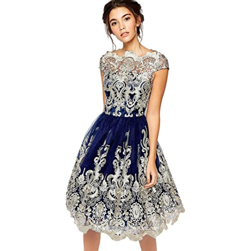 Womens Dress,Lace Applique Swing Embroidery Prom Formal Dress Evening Party Bridesmaid Ball Gowns Dresses (Blue, XL)