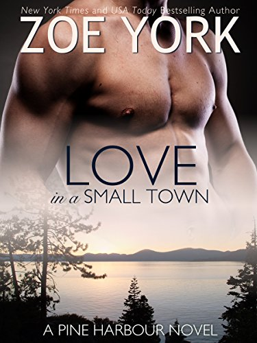 Love in a Small Town: The Soldier's Second Chance (Pine Harbour Book 1) by [York, Zoe]