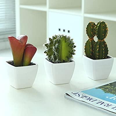 MyGift Artificial Cactus & Succulent Plants, White Ceramic Mini Pots, Set of 3
