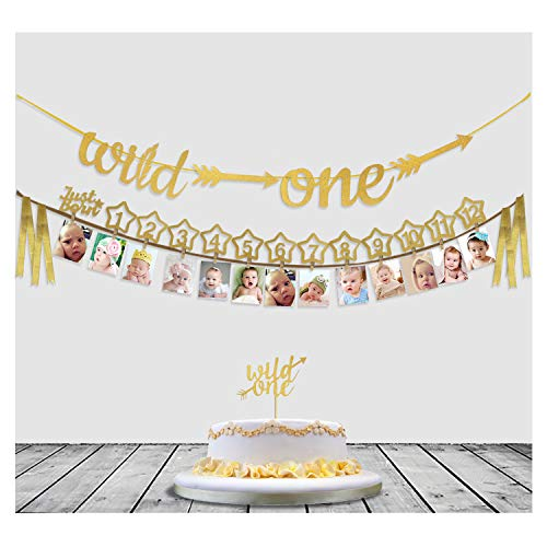 Babys 1st Birthday Decorations- 12 Month Photo Banners,Wild One Birthday Banners,Wild One Cupcake Topper,the Wild One Party Supplies