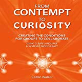 From Contempt to Curiosity: Creating the Conditions for Groups to Collaborate Using Clean Language and Systemic Modeling