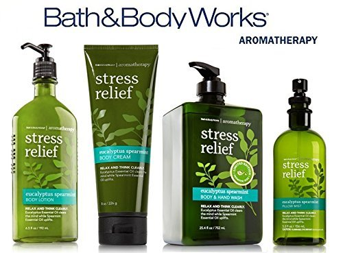 Bath & Body Works Aromatherapy Gift Set Eucalyptus Spearmint