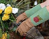 Forney 53442 Signature Thorn Rose Ladies