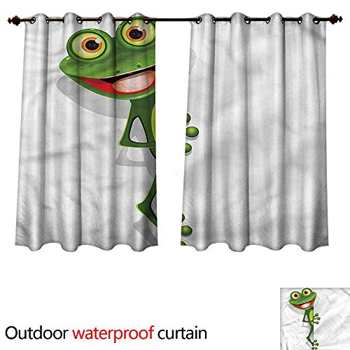 (cobeDecor Cartoon Outdoor Curtains for Patio Sheer Jolly Frog and Gecko Lizard W63 x L63(160cm x 160cm))