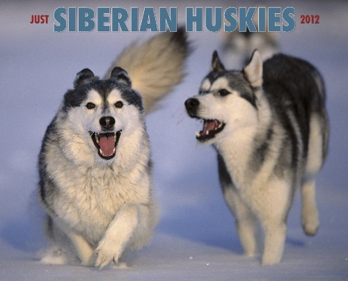 (Just Siberian Huskies 2012 Calendar (Just (Willow Creek)))