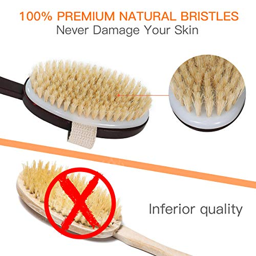 Buy skin exfoliator brush