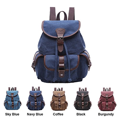 Queenie - Canvas Causal Daypack Laptop Backpack College Campus School Bags for Wowen Ladies Girls (Navy Blue Small (Blue / Navy Laptop Backpacks)