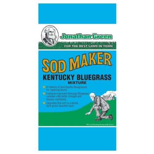 Kentucky Bluegrass Lawn (Jonathan Green 11982 Sod Maker Kentucky Blue Grass Seed Mix, 1 Pounds)