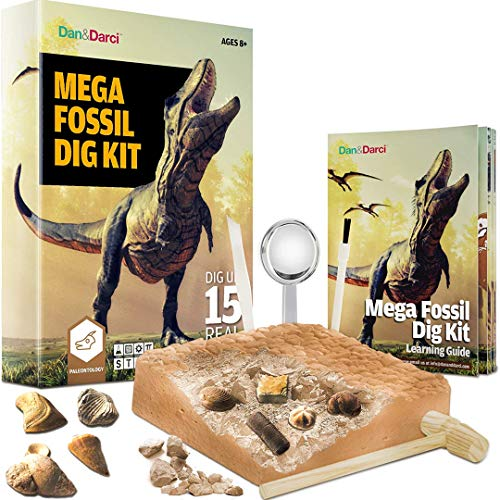 Mega Fossil Dig Kit - Dig Up 15 Real Fossils, Dinosaur Bones, Shark Teeth & More - Dinosaur Digging Kids Activities - Science Toys for Kids - Science Archaeology Paleontology Gifts for Boys and Girls