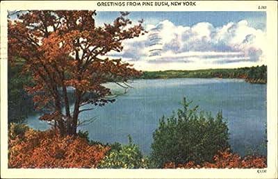 Greetings From Pine Plains Pine Plains, New York Original Vintage Postcard