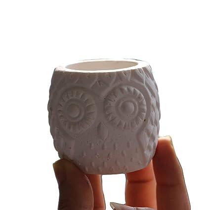 Amazon com: Owl Silicone Flower Pot Mold Concrete Succulent