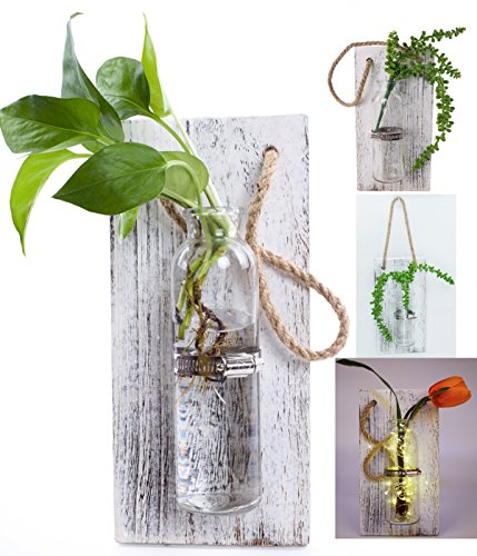 Rustic Home Décor Wall Art Decoration Solid Wooden Board (Retro polished) Hanging Planters Wall Vases Hydroponic Plants Hanging Glassware for Home Garden Living Room Decor by Eanjia (no flower)(White) (Board Flowers Painting)