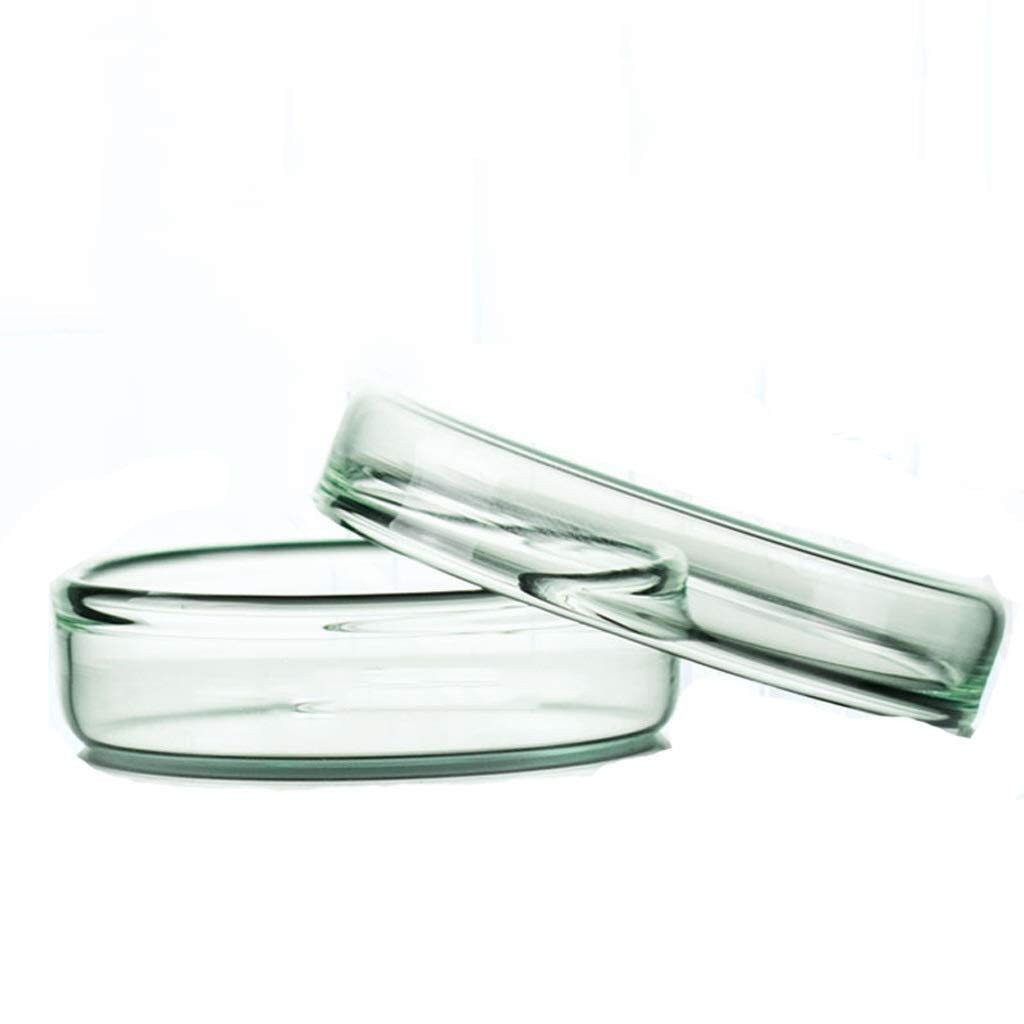 Wyyggnb Laboratory Equipment Laboratory Glass Dish Thickened Glass Material 3 Pieces Transparent Clear Biological Culture Dish Chemical Biological Equipment (Size : 150MM) by Wyyggnb