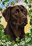 Cheap Chocolate Labrador – Tamara Burnett St Patricks Large Flag