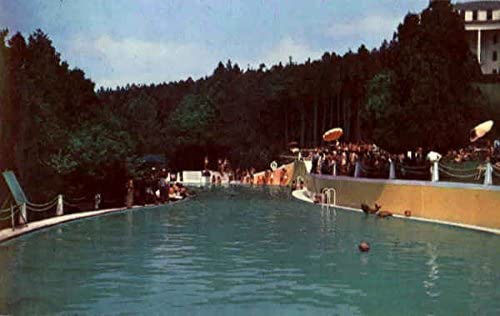 Swimming Pool Grand Hotel Mackinac Island Michigan Mi Original Vintage Postcard At Amazon S Entertainment Collectibles Store