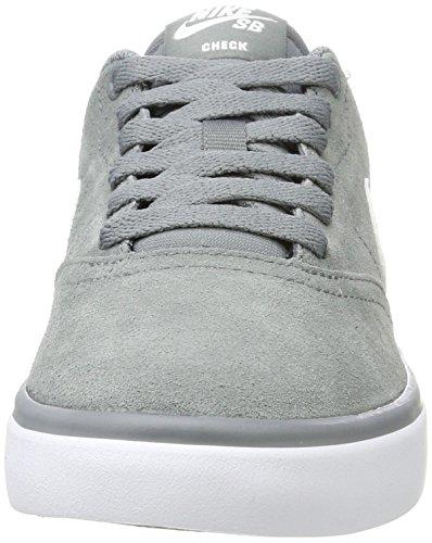 Zapatillas De Skate Nike Hombres Sb Check Cool Gray / White