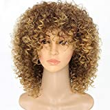 New Arrive Blonde Curly Wigs for Women's Fashion Hair Extensions Ombre Color Afro Kinky Curly Wig Hairstyle Look Same...