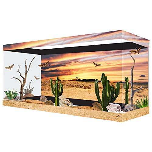 Habitat Wraps Desert Sunset Reusable Glass Tank Background, 29.5