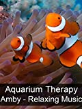 Aquarium Therapy -  Amby - Relaxing Music