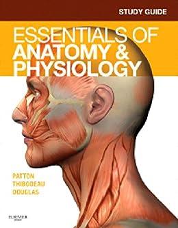 Book master of anatomy