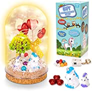 Fairy Craft Light for Kids, Making Your Own Night Light DIY Craft Magic Nightlight Kits for 4-12 Year Old Girl