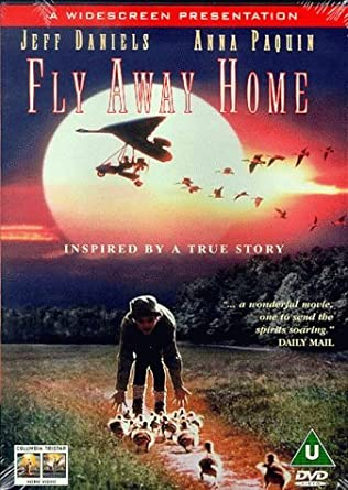 Fly Away Home [Francia] [DVD]: Amazon.es: Jeff Daniels, Anna ...