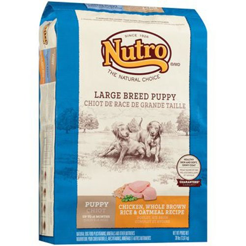 NATURAL CHOICE Large Breed Puppy Chicken, Whole Brown Rice and Oatmeal Formula - 30 lbs. (13.61 kg)