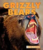 Grizzly Bears, Kathryn Stevens, 1592968473